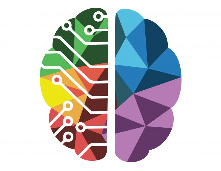 Two-lobed brain illustration with bright colored segmentations